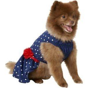 Frisco blue and white polka dot dog dress